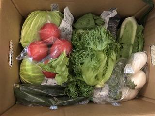 2020.9.12嬬恋村の野菜