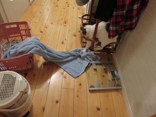 洗濯物を引っ張り出すぷに.JPG